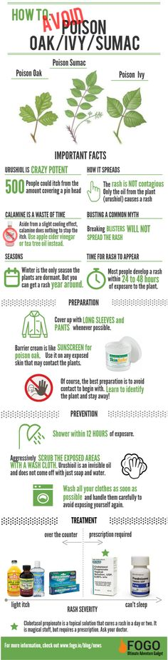 Everything You Know About Poison Oak/Ivy/Sumac is Wrong [Infographic] - Fogo Digital, Inc