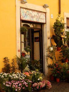 Trastevere, Roma Windows, Doors, Voyage, Ramen, Window, Gate