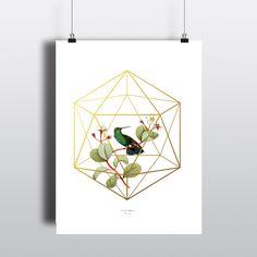 Botanical, Bird, Gold icosahedron Cage, Instant Download, Minimalist Art, Geometric Art, Poster Art, Digital download