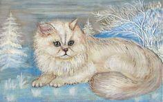 kleine Chinchilla Katze