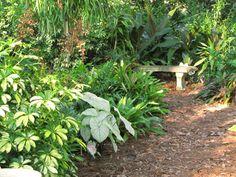 Gulf coast garden.