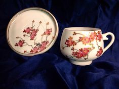 Lithophane Cup & Saucer Vintage Asian Antique Set Japanese