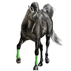Meet our Newest Arabian Colt, Sonny! Horse Drawings, Animal Drawings, Horse Animation, Horse Games, Horse Armor, Horse Paintings, Artwork Pictures, Equine Art, Magical Creatures
