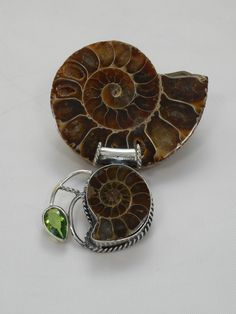 Ammonite Fossil Pendant 9 with Peridot