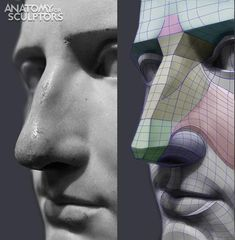 Uldis Zarins is raising funds for Form of The Head and Neck - by Anatomy For Sculptors on Kickstarter! Form of The Head and Neck. This is human anatomy for artists. Making Anatomy Visual And Understandable! Facial Anatomy, Head Anatomy, Human Anatomy Drawing, Body Anatomy, Anatomy Art, Zbrush Anatomy, Anatomy Study, Anatomy Books For Artists, Volume Art