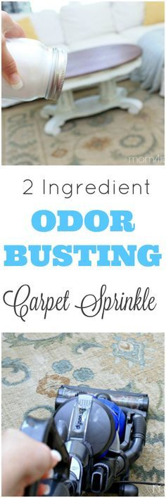 Got pets? You need this DIY 2 Ingredient Pet Odor Busting Carpet Sprinkle…