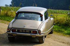 Citroën DS 20 Pallas - 1974 Citroen Ds, Fiat, Classic Cars, Automobile, French, Vehicles, Interior, Cars, Europe