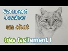 Comment dessiner une jonquille video pinterest - Comment dessiner un lotus ...