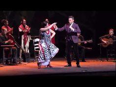 El Sol, La Sal, El Son. El Flamenco Patrimonio del Alma - Canal Sur 15 Noviembre 2010.