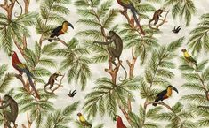 Jungle Print Natural World (Jungle Print) - Graduate Collection Wallpapers - From the Natural World collection by Miki Rose, a beautiful jungle trail, with monkey, toucan, parrot and humming bird set amongst the leaves, with the feel of a Victorian collector's artwork. Please request sample for true colour match. Paste the wall product.