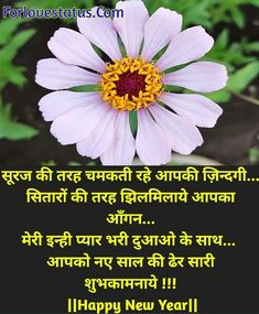 Top 10 Best Happy New Year Shayari in Hindi Best New Year Wishes, New Year Wishes Messages, Happy New Year, Shayari Image, Shayari In Hindi, Love Status, Romantic Love Quotes, New Year Gifts, Good News