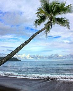 You deserve a vacation. The remote beaches of Drake Bay on the Osa Peninsula via @jsa_photography! #CostaRica #vacations #crexperts