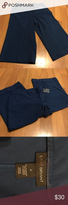 Plus💋 Lane Bryant Trouser Capris NWOT. The Perfect Capris for spring! Beautiful blue color. Size 14. Extra button included. Lane Bryant Pants Trousers