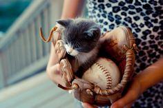 Baseball kitty!!!