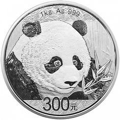 China 300 Yuan Silber Panda 1 kg Silber PP