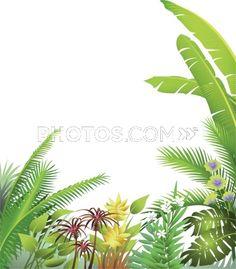 jungle bushes -