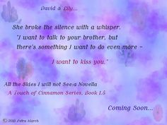 All the Skies I will not See:a Novella (A Touch of Cinnamon series, Book 1.5) Teaser - Coming Soon!