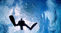 Diving - Canary Islands