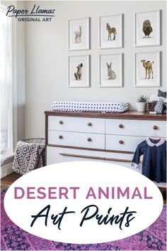 Set of six baby animal prints including a llama, donkey, owl, coyote, bunny, and camel.  This desert nursery artwork adds a herd of playful cuteness to a, southwestern baby room or modern adventure nursery.  Discover the complete collection of baby animal prints at Paper Llamas. Baby Girl Room Decor, Girl Rooms, Baby Room, Animal Art Prints, Adventure Nursery, Nursery Artwork, Llamas, My Collection, Baby Design
