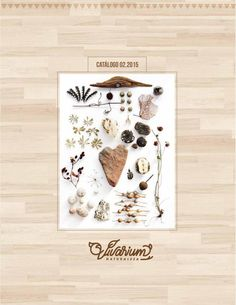 Vivarium by jungle design Vivarium, Design, Self Branding, Point Of Sale, Mondays, Branding, Street, Store, Products
