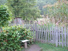 fence...rustic and quaint