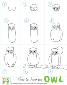 How to draw an owl handout from Deep Space Sparkle