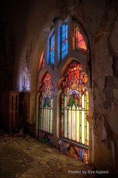 Windows with beauty ✨