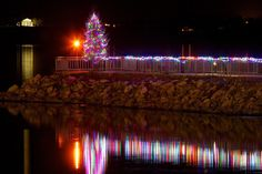 Oh Christmas Tree...on Seneca Lake, Geneva NY