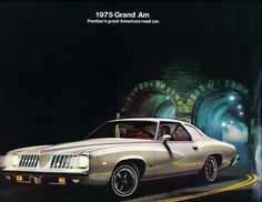 1974 Pontiac Firebird Trans Am Bonneville GTO LeMans Grand Am FL Sales Brochure