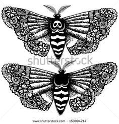 moths - Google Search