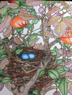 The Time Garden. Daria Song.