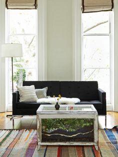 Turn old windows into a coffee table terrarium. (Yup!)