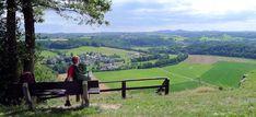 Durch Wald, Heide und Bruchland bei Hinsbeck