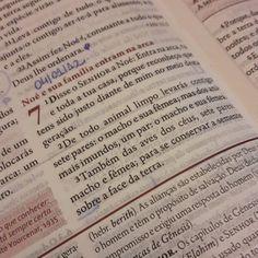 E durante esse ano você vai poder acompanhar a leitura bíblica anual. São 3 capítulos por dia. Vamos ler juntos? Hoje a leitura é Gênesis 7 a 9.  #leiturabiblica #leiaabiblia #biblia #anodasmudançasradicais #perseverança #fé #amor #jesus #camposdosgoytacazes #sjb #grussai