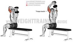 Seated dumbbell overhead triceps extension. An isolation exercise. Target muscle: Triceps Brachii. Synergists: None.