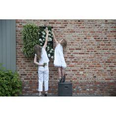 D&M Depot Karoo Verticale Plantenbak 40 x 40 cm Outdoor Structures, Gardens, Mood, Seeds, Garden, Garden Types, Tuin, House Gardens, Formal Gardens