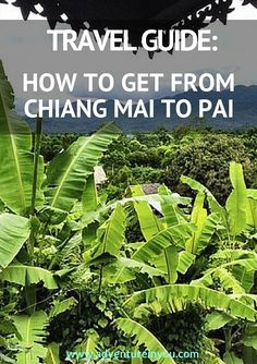 Wondering how to travel Northern Thailand? Here is your travel guide in visiting Pai from Chiang Mai