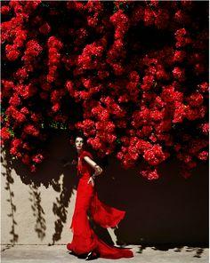 #Red Mario Testino- Queen of Hearts.                                                                                                                                                      Más