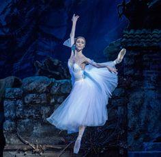 """<<Svetlana Zakharova (Bolshoi Ballet) in """"Giselle"""" # Photo © Pierluigi Abbondanza>>"""