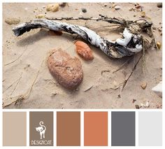 Beach Life: Sand, Stone, Terracotta, Brown, Beige, Grey, Blue, Steel - Colour Inspiration pallet