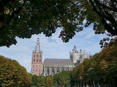 Kathadraal Sint Jan 's-Hertogenbosch