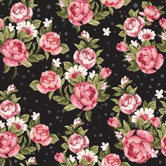 Roses on Black| Removable Wallpaper| WallsNeedLove