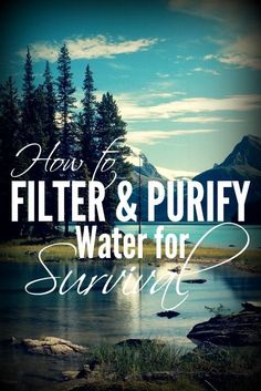 How to Filter and Purify Water for Survival! Water is definitely something you don't want to be without! Prepared-Housewives.com