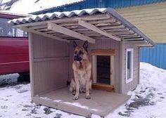 Diy outdoor dog kennel window 49 Ideas Diy outdoor dog kennel window 49 Ideas – Marjorie B. Pallet Dog House, Wooden Dog House, Large Dog House, Dog House Plans, House Dog, Animal Room, Animal House, Grande Niche, Wooden Dog Kennels