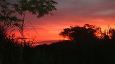 Sonnenuntergang auf meiner Terrasse.