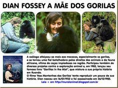 gorilas em extinção - Pesquisa Google