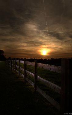 Summer Sunset,Taken In Windsor Great Park, West Berkshire, England, photo by Jack Hood.