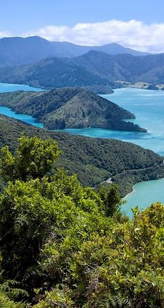 Your South Island adventure begins with the Queen Charlotte Track, NZ
