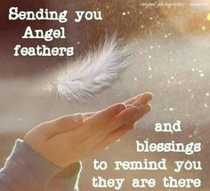 Angel feathers... a reminder that something wonderful is in store for you and you are loved.