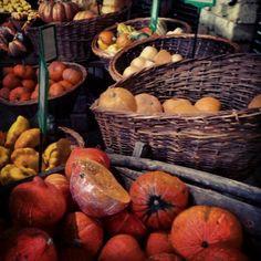 #Pumpkin #TravelShoes